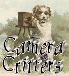 Camera Critters