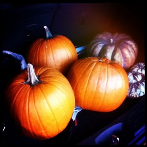 Hey we have been to the #pumpkin_patch #tulsa