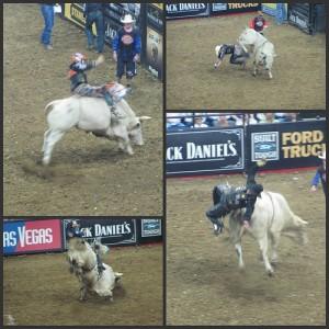 Professional Bull Riding Picnik collage 3