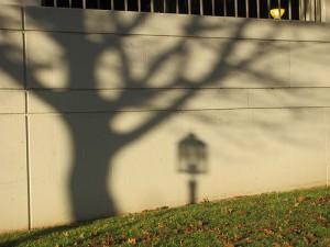 Gas Company Shadow 1