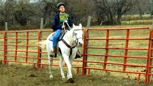 Therapeutic Riding Update