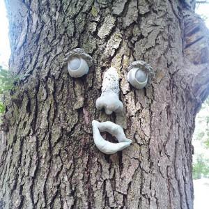Meet my cousin's #trees Melvin Barker #dellrapids #southdakota