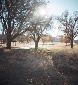 Sun and Shadows at Lafortune Park