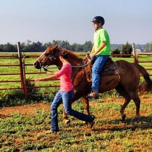 Logan trotting Seven #horses #horseback #riding